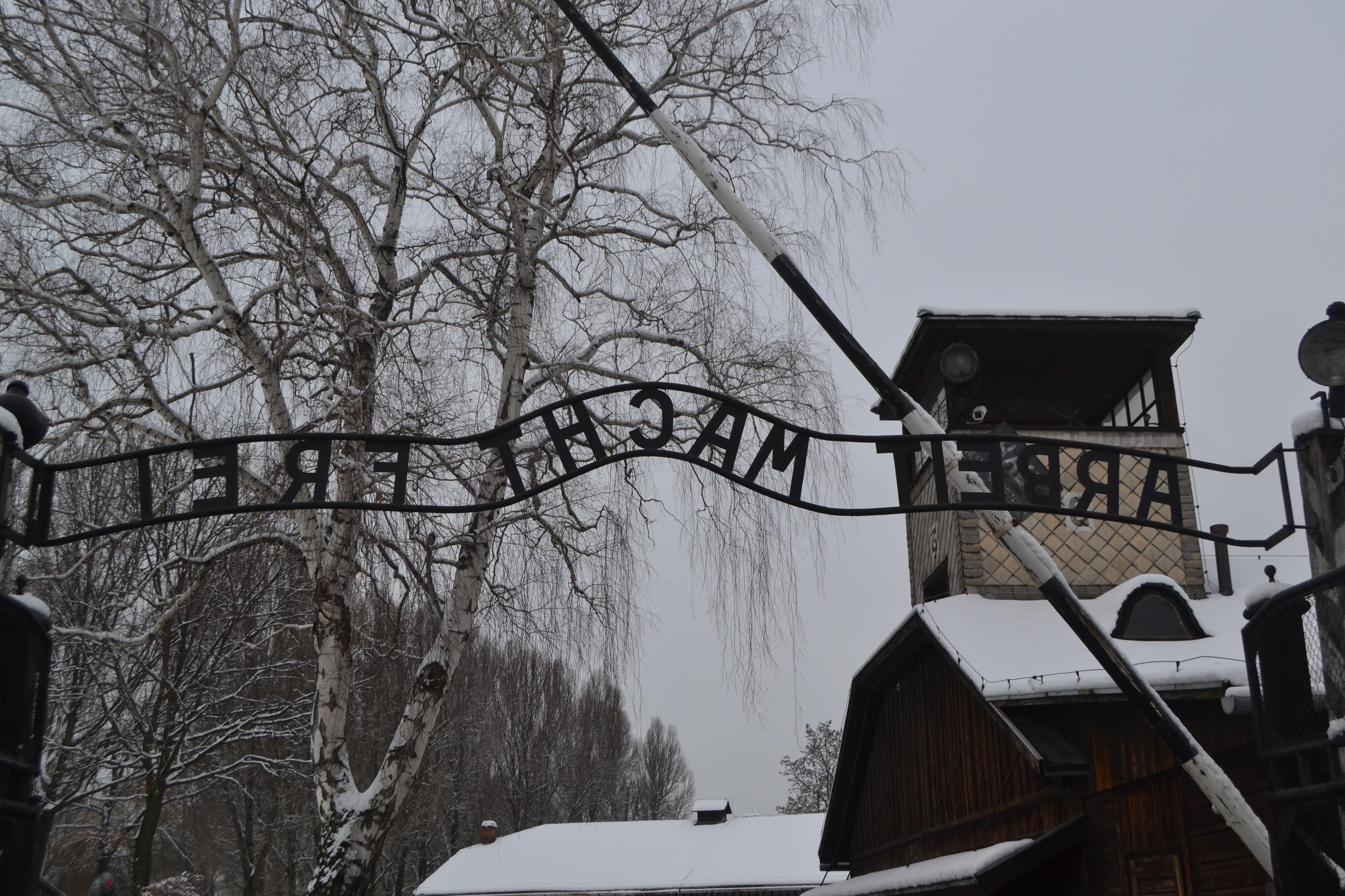 Charlotte Masters at Auschwitz-Birkenau Memorial Museum